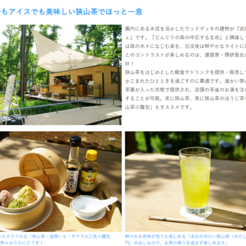 チームラボ どんぐりの森の呼応する生命/武蔵野樹林パーク(Netz Saitama PARK)